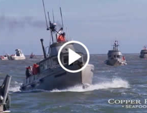 Copper River Seafoods Promo Video Alaska Videography