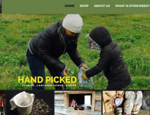 Completed 2 new websites last week